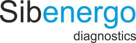 Сибэнергодиагностика sibenergo diagnostics